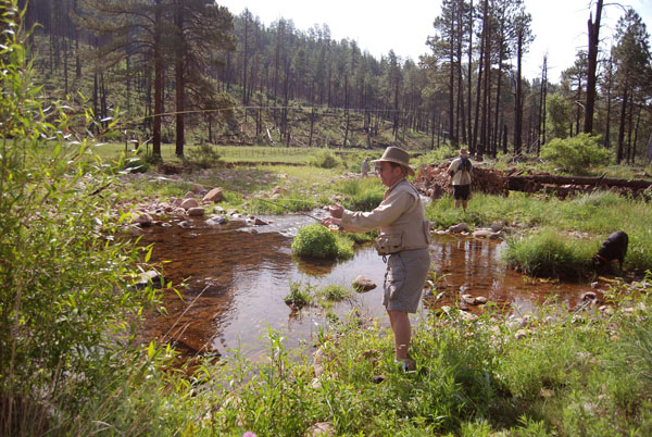 Desert Fly Casters Trout Bums Wanted Club Outings